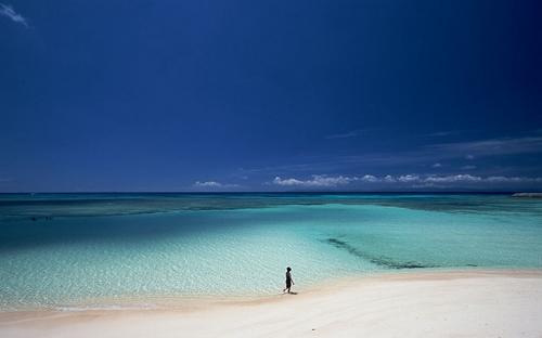 如果,你有机会来到太平洋上的一座孤岛,岛上有着茂密的椰子树